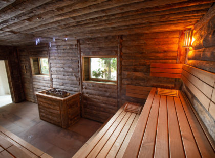 alpha wellness sauna