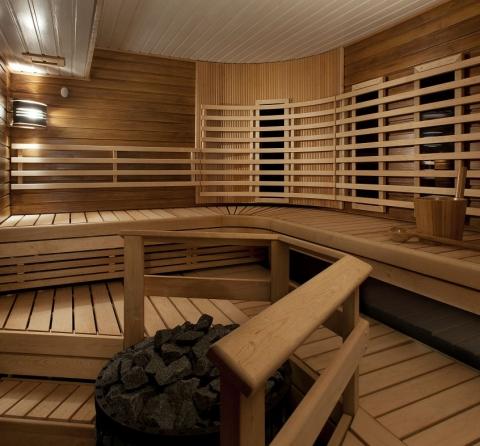rauduspuu hybrid sauna